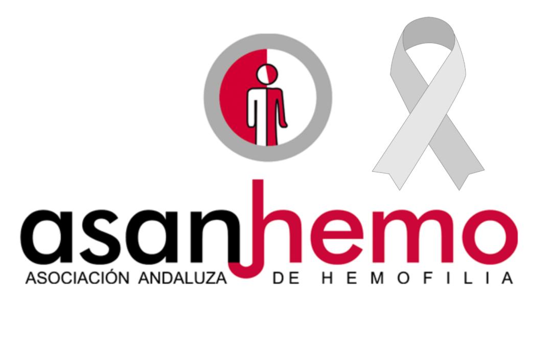 Nos unimos a CERMI Andalucía con el lazo gris